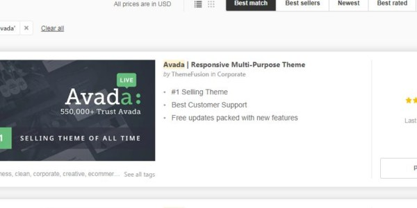 What are the best WordPress theme s for business?